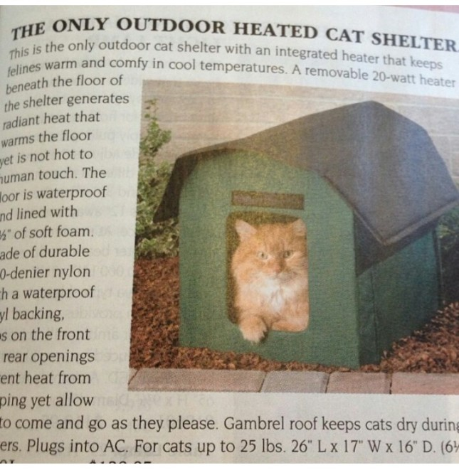 heated cat shelter in sky mall